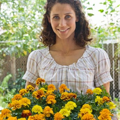 How Far Apart Do I Plant Marigolds?