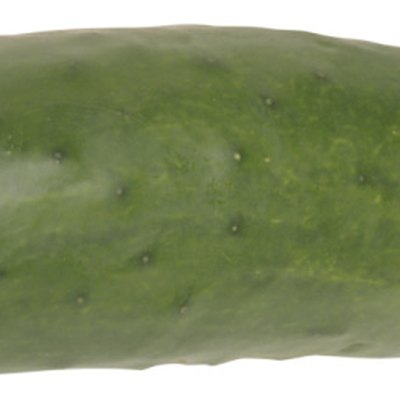 How Much Water Do Cucumbers Need?