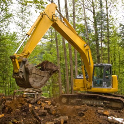 Factors of Land Clearing in Agriculture