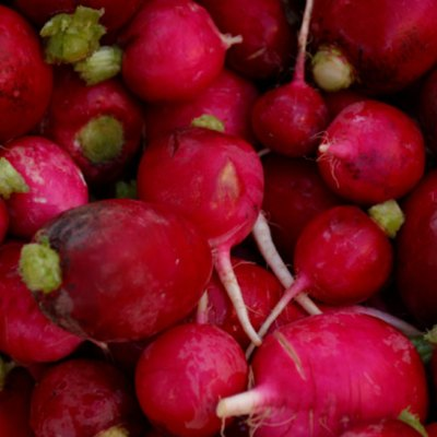 How to Store Radishes After Pulling