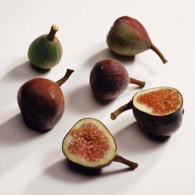Companion Plants for Figs