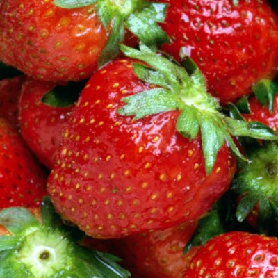 Can You Grow Strawberries From a Berry?