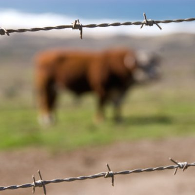 How to Stretch Barbed Wire Fencing