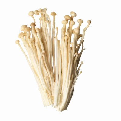How to Grow Enoki