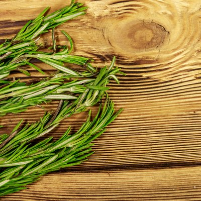 Fresh rosemary herbs on a wooden table. Top view