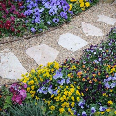 The walkway at a botanical garden