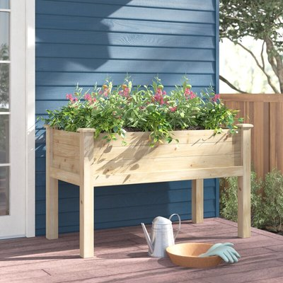 An elevated wooden planter box against a blue house