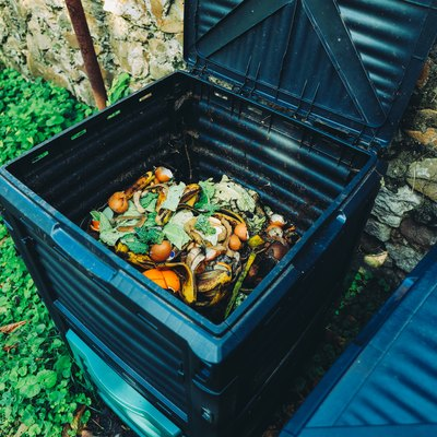 Compost bin with organic waste