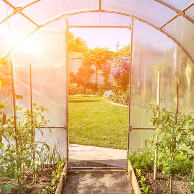 arched small greenhouse on private backyard with sun flare