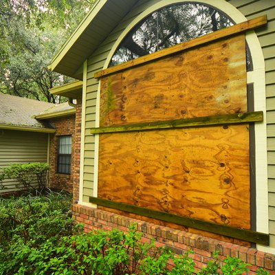 Plywood covering wide windows in forested area