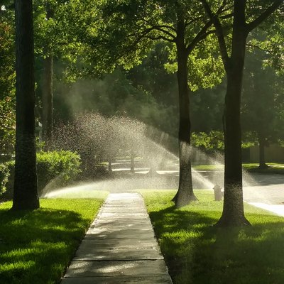 Morning Sunlight through Sprinklers