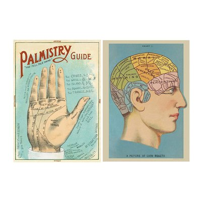 Phrenology and Palmistry Poster Pack