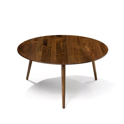 Amoeba Wild Walnut Coffee Table