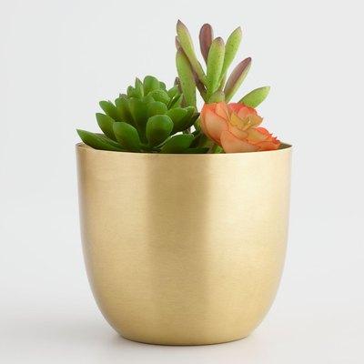 Medium Brass Planter
