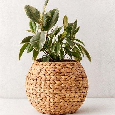 Wyn Woven Planter Basket