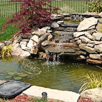 How to Remove Algae From Ponds