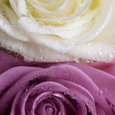 How to Preserve Flowers in Epoxy Resin
