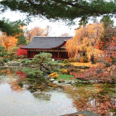 Elements of a Zen Garden & Their Meaning