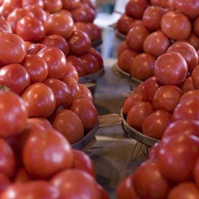 How to Grow Tomatoes in Uganda