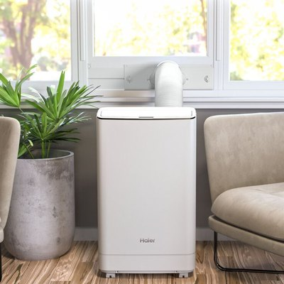 A white portable A/C in a living room next to a plant and a sofa