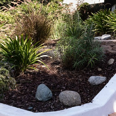 front yard flower bed with plants and rocks