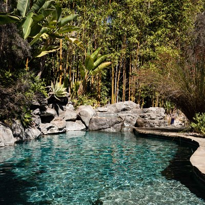 a sparkling pool surrounded by lush trees and large bolders