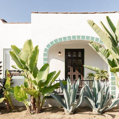 A white mediterranean-style house with large green plants in the front