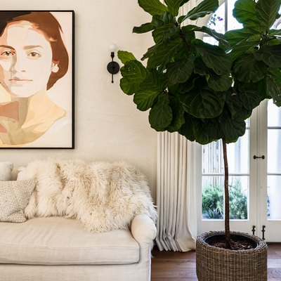 White-walled living room with white sofa, portrait painting and a large tree plant
