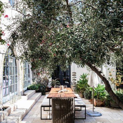 A mediterranean styled patio with trees and plants