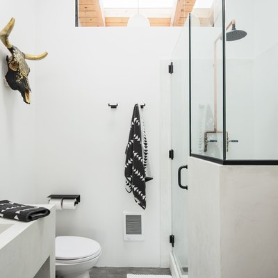 Minimalist bathroom with white walls, a glass shower and animal skull