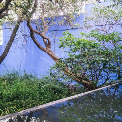 Mid-Century blue building with pond surrounded by trees