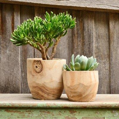 Modern Natural Timber Planter