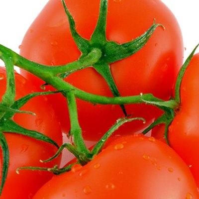 Tomato Plants & Epsom Salt