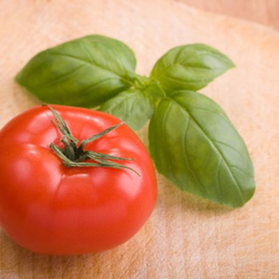 Can I Grow Basil & Tomatoes in the Same Container?