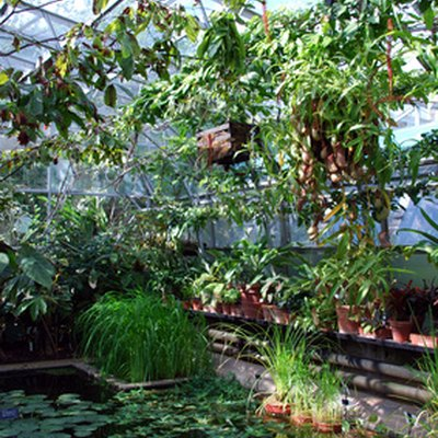 DIY: Build Your Own Greenhouse From Sliding Glass Doors