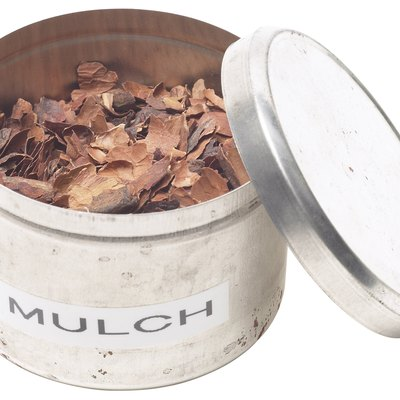 Difference Between Mulch & Wood Chips