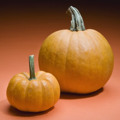 How to Grow Pumpkins in a Container