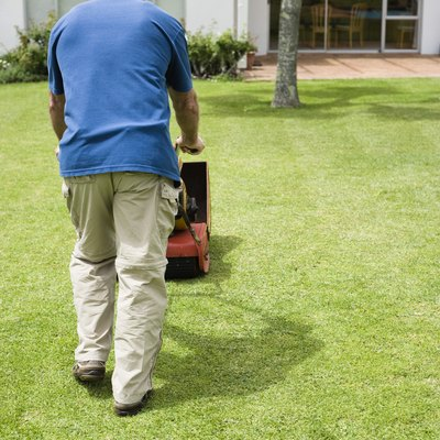What to Do When You Overfill Oil on a Lawn Mower?