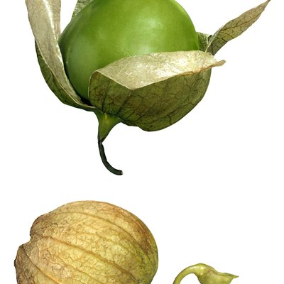 Are Tomatillos Acidic?