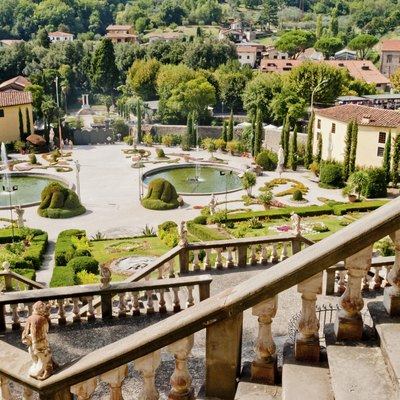 What Plants for an Italian Garden?