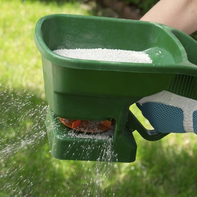 How Long Does Fertilizer Take to Work in the Grass?