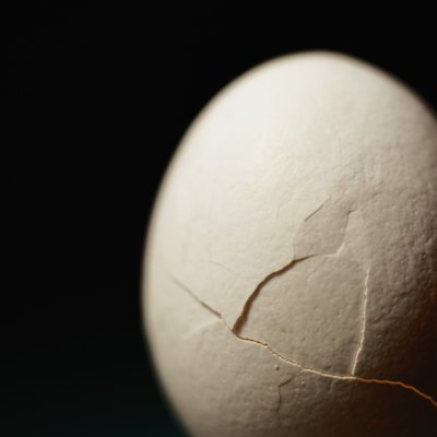 What Happens When You Put Eggshells in the Fireplace?