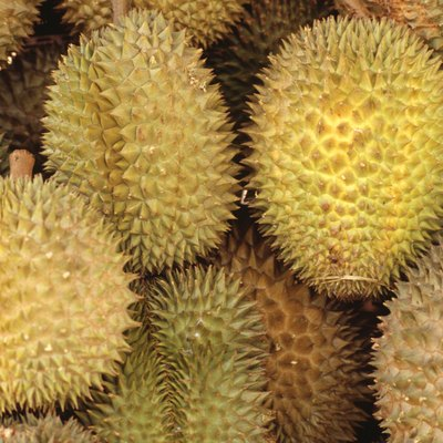 How to Get Rid of a Durian Smell in the Fridge