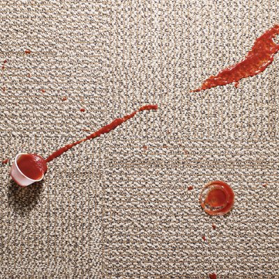 How to Get Super Tough Stains Out of Your Carpet