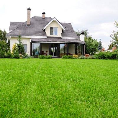 garden of a house