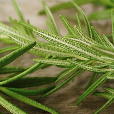 Difference Between Rosemary & Thyme