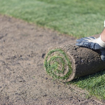 How Much Will It Cost to Sod My Yard?