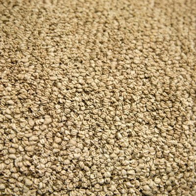 How to Fix Discoloration on Carpet