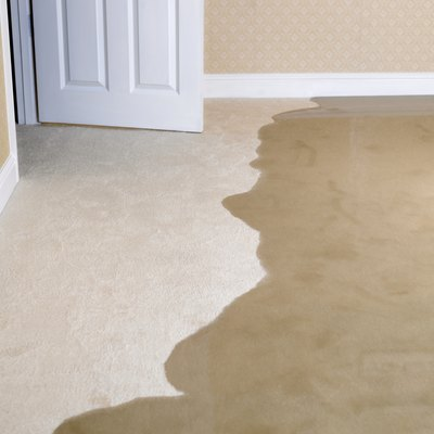 How to Clean Wet Carpets