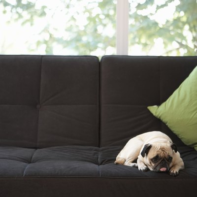 How to Get Mud Stains out of a Couch